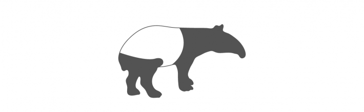 Tapir Literary Agency